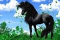 Картинка облака, зеленая, небо, черный, листья, трава, арт