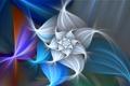Картинка цветок, свет, узор, лепестки, объем