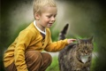 Картинка кот, текстура, мальчик