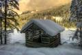 Картинка зима, лес, снег, деревья, ель, бревна, домик