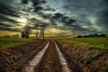 Картинка дорога, деревья, закат