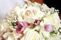 Картинка цветы, букет, flowers, обручальные кольца, bouquet, wedding rings