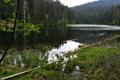 Картинка лес, горы, Чехия, Шумава, Богемия, narodni park Šumava, озеро Лака
