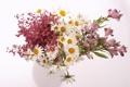 Картинка лилии, ромашки, букет, белый фон