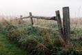 Картинка природа, туман, забор