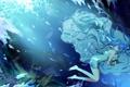 Картинка девушка, цветы, лепестки, hatsune miku, вокалоид