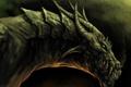 Картинка дракон, дыхание, клыки, рога
