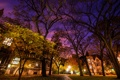 Картинка United States, Chicago, Illinois, Jackson Park Terrace