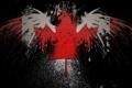 Картинка орел, канада, Стиль