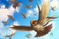 Картинка птицы, крылья, арт, в небе, хохолок