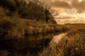 Картинка пейзаж, река, утро