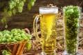 Картинка beer, drink, alkohol, bier, pivo