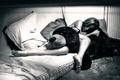 Картинка девушка, игрушка, собака, ножки, Laurent KC, Ania