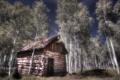 Картинка пейзаж, дом, деревья