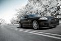 Картинка дорога, деревья, чёрный, в снегу, ягуар, Jaguar XK