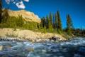 Картинка лес, горы, река, поток