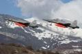 Картинка истребители, пара, многоцелевые, Northrop F-5S