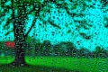 Картинка стекло, вода, капли, дождь, окно