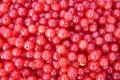 Картинка ягоды, еда, красная смородина