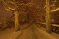 Картинка зима, ночь, город, улица