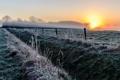 Картинка иней, поле, туман, забор, утро