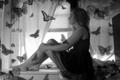 Картинка девушка, бабочки, подоконник, сидит, летают, чёрно - белое