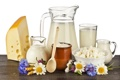 Картинка цветы, сыр, молоко, творог, сметана, молочные продукты