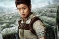 Картинка Korean, Ki Hong Lee, boy, The Maze Runner, American, 2014, labyrinth