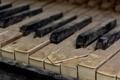 Картинка макро, музыка, клавиши, пианино
