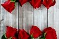 Картинка цветы, розы, красные, wood, flowers, Roses, bud
