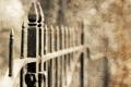 Картинка макро, стиль, фон, забор