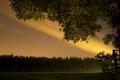 Картинка поле, ночь, природа, дождь