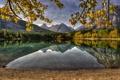Картинка лес, листья, горы, ветки, озеро, отражение, Канада