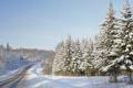 Картинка зима, дорога, лес, деревья, природа, фото, гора