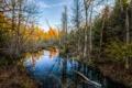 Картинка осень, лес, небо, деревья, река