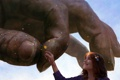 Картинка цветок, рука, арт, девушка, лепестки, радость