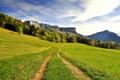 Картинка дорога, зелень, деревья, горы, холмы, забор, склон