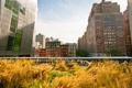 Картинка нью-йорк, New York, usa, nyc