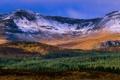 Картинка лес, горы, природа, панорама