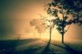 Картинка пейзаж, ночь, город, туман