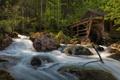 Картинка лес, вода, деревья, река, камни, поток, хижина