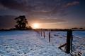Картинка зима, снег, деревья, закат, забор