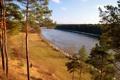 Картинка деревья, река, берег