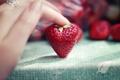 Картинка макро, рука, клубника, ягода, пальны