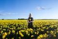 Картинка поле, лето, девушка, цветы, настроение