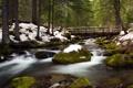 Картинка лес, снег, деревья, мост, река, камни