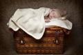 Картинка младенец, фото, спит, дети, настроение, сундук
