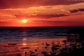 Картинка закат, пляж, солнце, птицы, море, красный