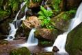 Картинка лес, река, ручей, камни, скалы