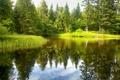 Картинка лес, небо, деревья, отражение, река